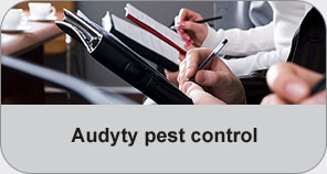 audyty pest control
